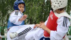 2016-05-28-MDD-Juzanka-taekwondo-exhibicia-8